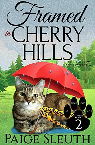 Framed in Cherry Hills by Paige Sleuth