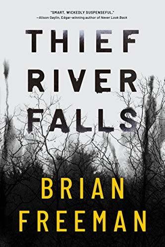 Thief River Falls by Brian Freeman