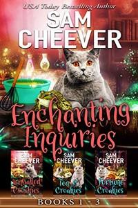 Enchanting Inquiries by Sam Cheever