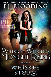 Whiskey Storm by F. J. Blooding
