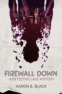Firewall Down by Aaron B. Black